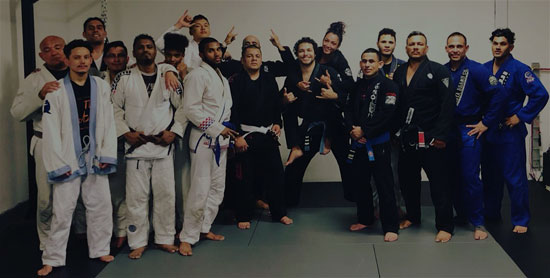 American Killer Bees NYC | 5 Boro FightHaus | Services